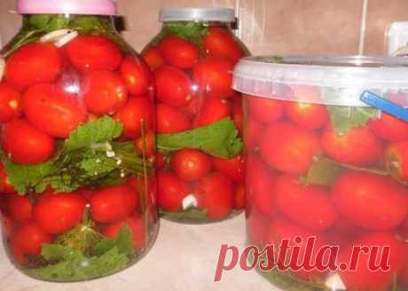 Tomatoes fermented in banks for the winter, the recipe