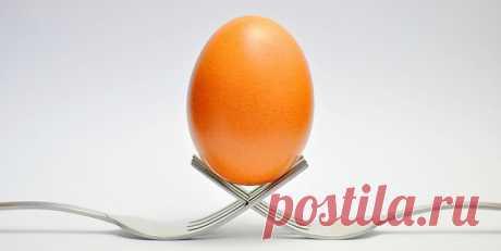Zamene za jaja u receptima   LifePress magazin