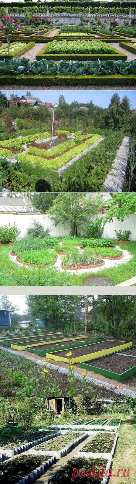 Красивый огород.