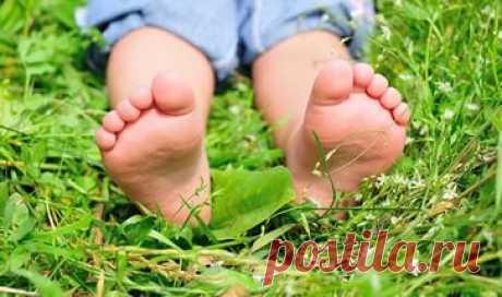 Бородавка у ребенка на подошве ноги лечение  Как проявляется подошвенная бородавка у ребенка на ноге? Что вызывает образование подошвенных бородавок у малышей? Какое лечение бородавки на подошве ноги можно применять у детей? Как лечить подошвенные бородавки в домашних условиях?