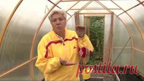 obrabotka of the greenhouse in the fall WITHOUT REPLACEMENT of the SOIL. ❖ 5 SIMPLE RULES!!!