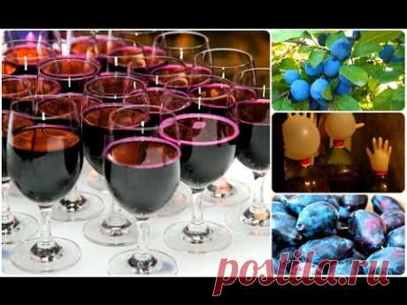 Domestic wine from plums