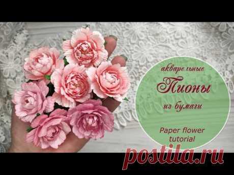 Пионы акварельные из бумаги / paper flowers tutorial