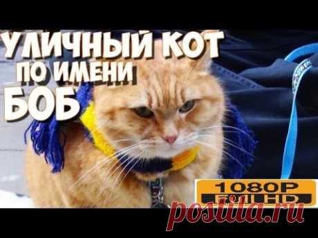 Уличный кот по кличке Боб  HD// НОВИНКИ КИНО 2017, ОТЛИЧНЫЙ ФИЛЬМ, ПОСМОТРИТЕ!