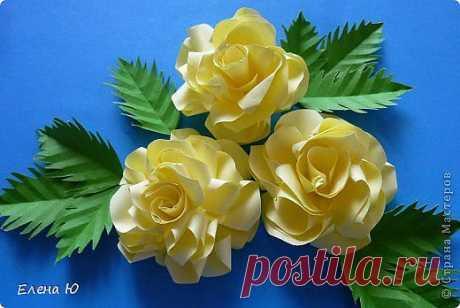 Розы из бумаги на скорую руку   Страна Мастеров