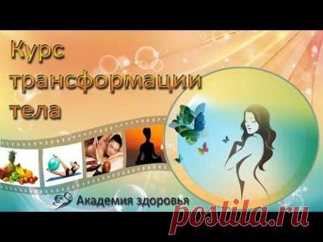Елена Бахтина Курс трансформации тела