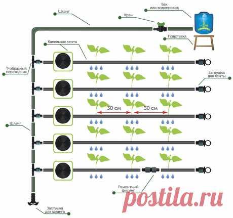 proxy.imgsmail.ru (960×899)