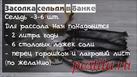 Засолка Сельди  в  Банке - Настоящий бочковой засол (Наталья Калнина)