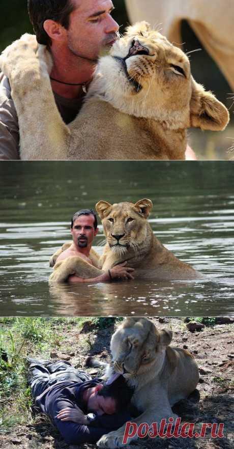 Уникальная дружба человека и льва (13 фото) - Fishki.Net | Фишкина картинка