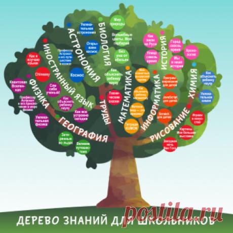 Книги, с которыми школьная программа станет простой и интересной   Папамамам — МИФ