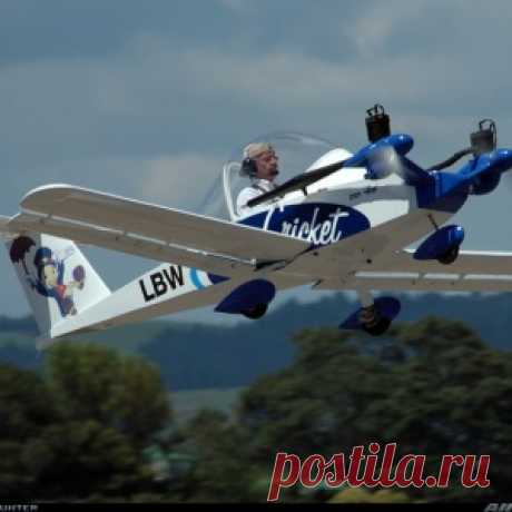 Cri Cri - the smallest two-engined plane in the world! (24 photos + 6...