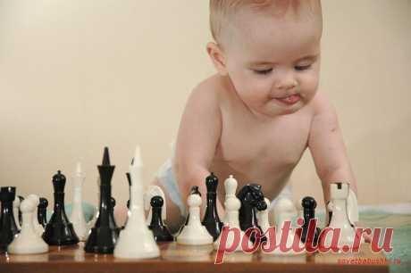 Малыши играют в шахматы | Советы бабушки