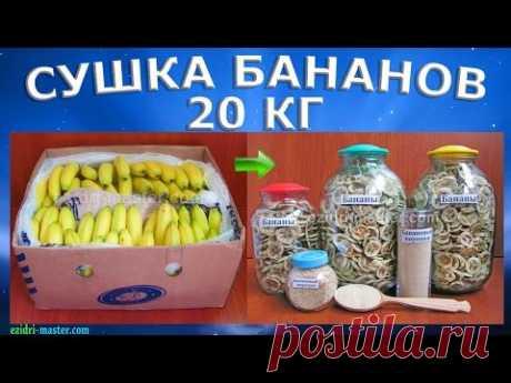 Калорийность банана – Польза бананов – Как высушить бананы?