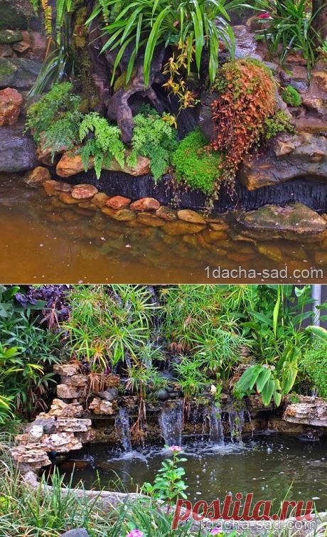 Дизайны сада и двора - есть чему поучиться! | Дачные идеи от Наталии Ширяевой | Яндекс Дзен