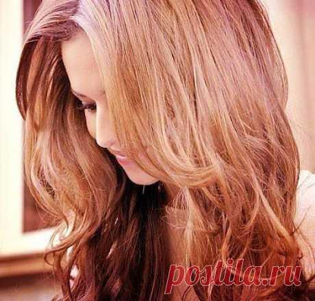 Настой крапивы для красивых волос | My Milady