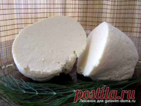 home-made cheese - sheep cheese • Cottage cheese and cheese dishes