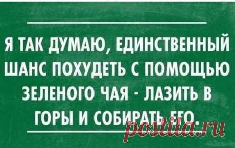 Несколько отличных шуток из Одессы - заряд позитива