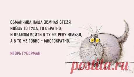 Хлёсткие «Гарики» Игоря Губермана - ♀♂ Гостиная для друзей - медиаплатформа МирТесен