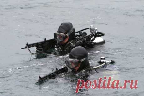 Новые противодиверсионные отряды Северного флота Как сообщает министерство обороны и ряд отечественных средств массовой информации, в ближайшее время в составе Северного флота появится ряд новых подразделений боевых пловцов, которым предстоит охраня…