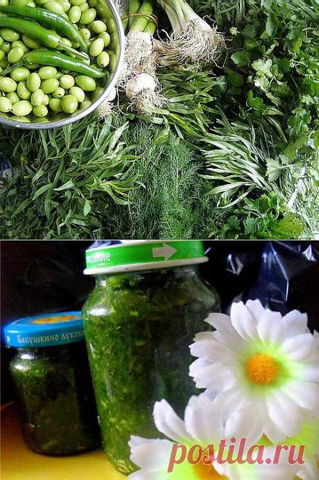 Зелень на зиму – еще несколько полезных рецептов / Простые рецепты