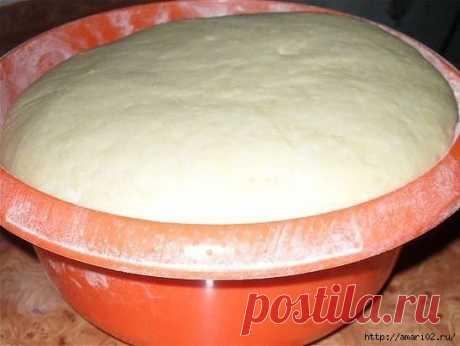 Тесто на майонезе для любой выпечки.