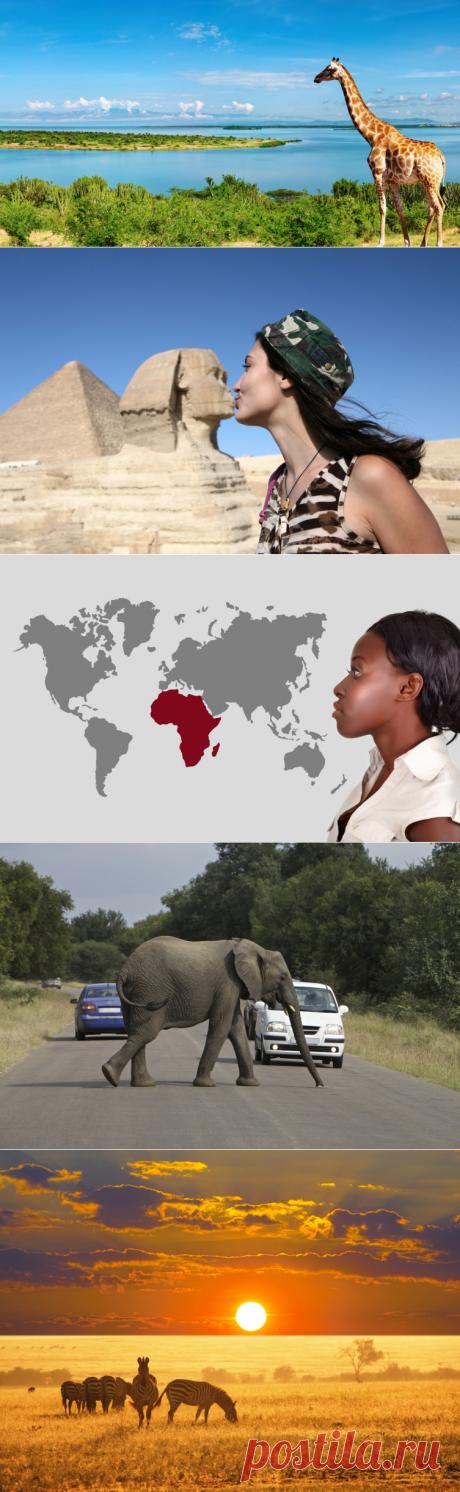 Африка – отсталый континент или колыбель прогресса? | Мир вокруг нас