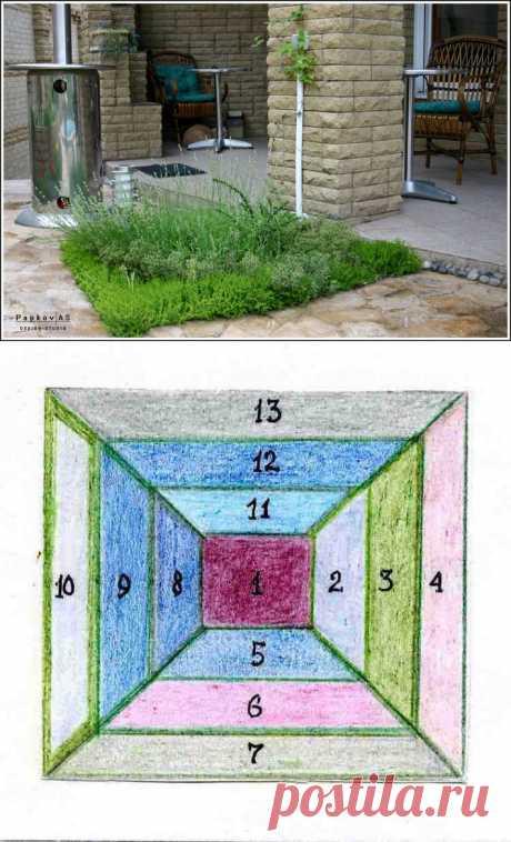 Ассортимент декоративных овощных растений для пряной грядки.Особое место на даче занимают пряно-ароматические и лекарственные травы. Большинство из них используются как приправа, лекарственное сырье, а также как душистые и декоративные растения.На любой, даже самой маленькой даче можно всегда найти уголок для пряных растений. Но лучше размещать их группами на солнечных местах, где под воздействием тепла они будут источать ароматические вещества и пахнуть особенно сильно.