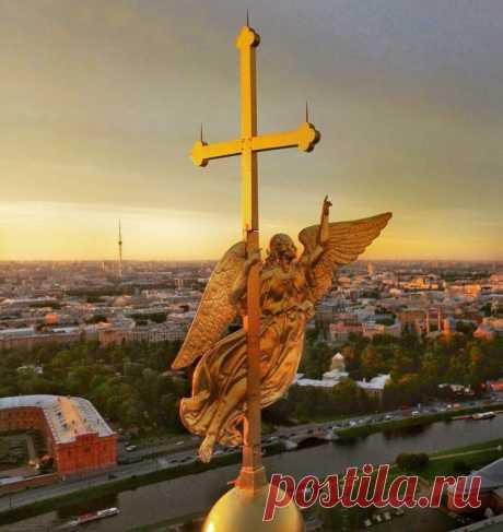 Ангелы Санкт-Петербурга