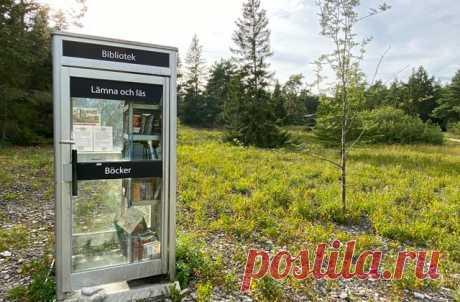 """Читальный зал на одного В библиотеке всегда тихо, а в этом читальном зале в Швеции еще и немноголюдно. Потому что эта библиотека рассчитана всего на одного человека. Ее открыли в бывшей телефонной будке недалеко от деревни Лерграв. Книги в библиотеку приносят местные жители. Собраться группой на литературные чтения не получится, но можно переждать дождь или спрятаться от диких кабанов или других животных. 📌 Все самое удивительное, что нашла на этой неделе редакция """"Моей Планеты""""…"""