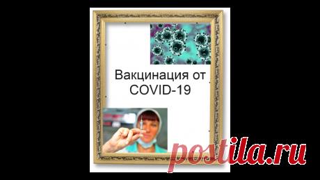 Когда начнут делать прививку от COVID-19 | Жизнь и кошелек | Яндекс Дзен