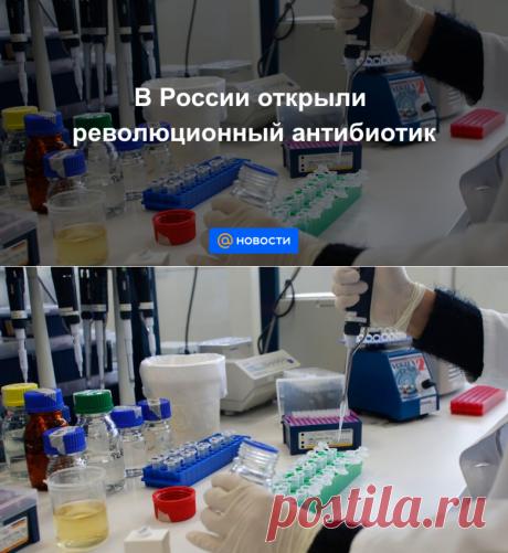 В России открыли революционный антибиотик - Новости Mail.ru