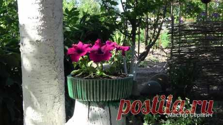 Не спешите выбрасывать коробку от торта, с ее помощью можно сделать отличную вещь для сада   Мастер Сергеич   Яндекс Дзен
