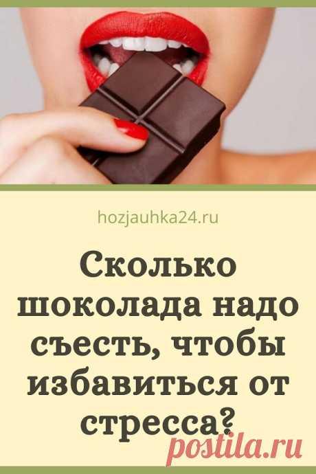 Сколько шоколада надо съесть, чтобы избавиться от стресса? ⋆ ХОЗЯЮШКА