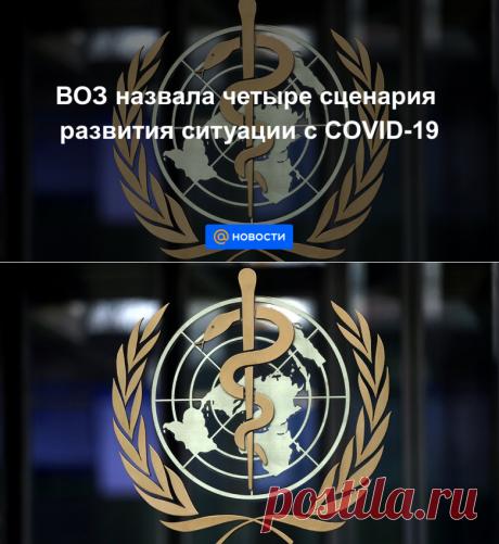 ВОЗ назвала четыре сценария развития ситуации с COVID-19 - Новости Mail.ru