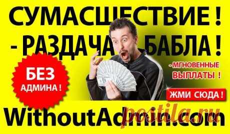 100kursov.com | Алексеев Константин