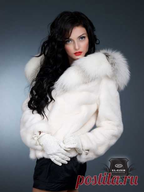 How to clean a fur coat in house conditions. Discussion on Blogs on Work
