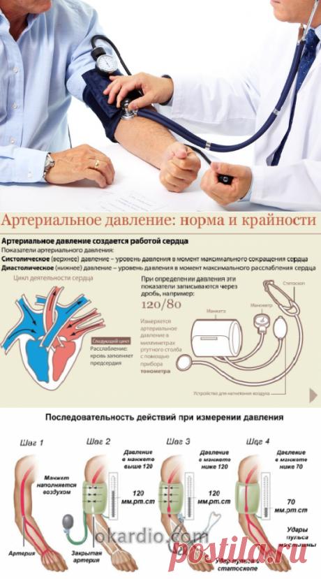 Где лучше делать замеры давления- дома или у врача?   Кладовая здоровья   Яндекс Дзен