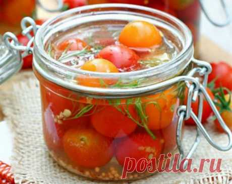 Консервируем томаты: лучшие проверенные рецепты от наших читателей | Статьи (Огород.ru)