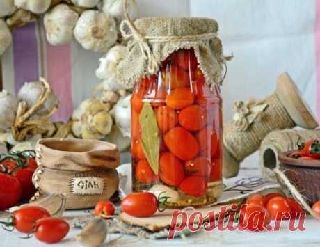Tomatoes for the winter: a grandiose warehouse of recipes of preparations for hostesses