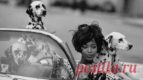 Фото: Наоми Кэмпбелл — 47 Наоми родилась в Лондоне, в модельный бизнес попала в 15 лет, в пятерку величайших супермоделей девяностых — в 20. Тогда, в 1990 году, журнал Vogue вышел с легендарной фотографией Питера Линдберга на обложке: на ней были самые красивые женщины мира — Линда Евангелиста, Синди Кроуфорд, Татьяна Патиц, Кристи Терлингтон и Наоми Кэмпбелл. Девяностые были ее временем — потому что были временем ярких женщин. В 1991-м она стала первой...