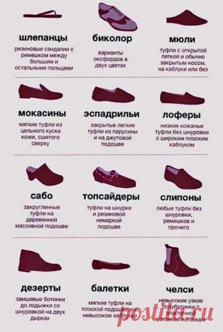 Учимся называть обувь правильно