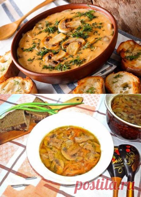 Луково-грибной суп в горшочках: этот нежнейший вкус вызывает бурю эмоций! - be1issimo.ru