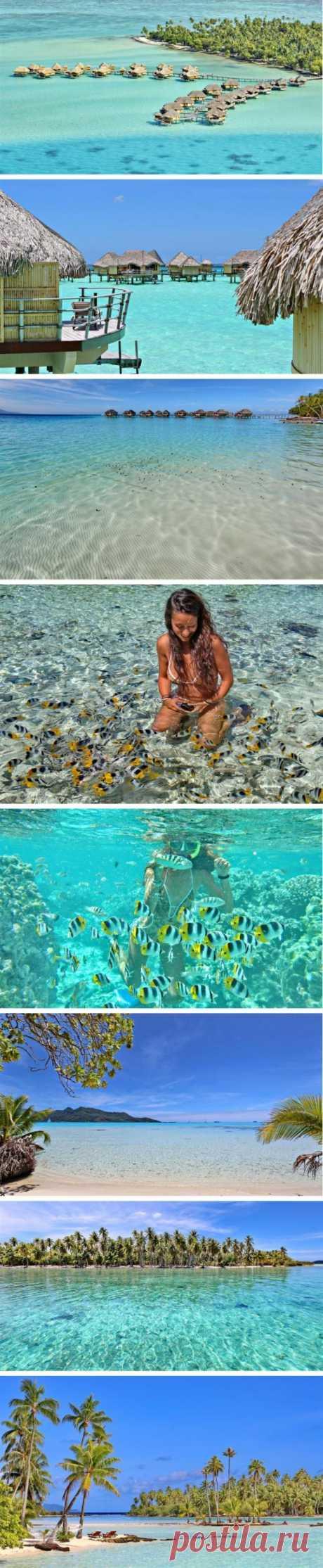 Allí, donde siempre el verano. La isla de la vainilla, la Polinesia francesa