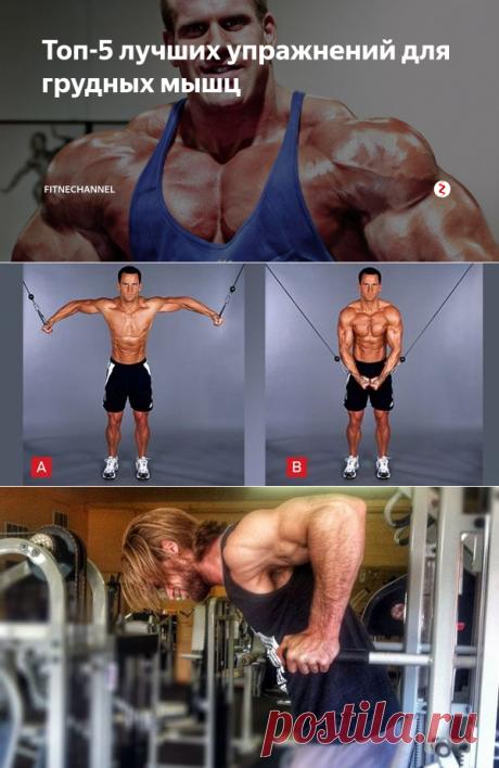 Топ-5 лучших упражнений для грудных мышц | fitnechannel | Яндекс Дзен