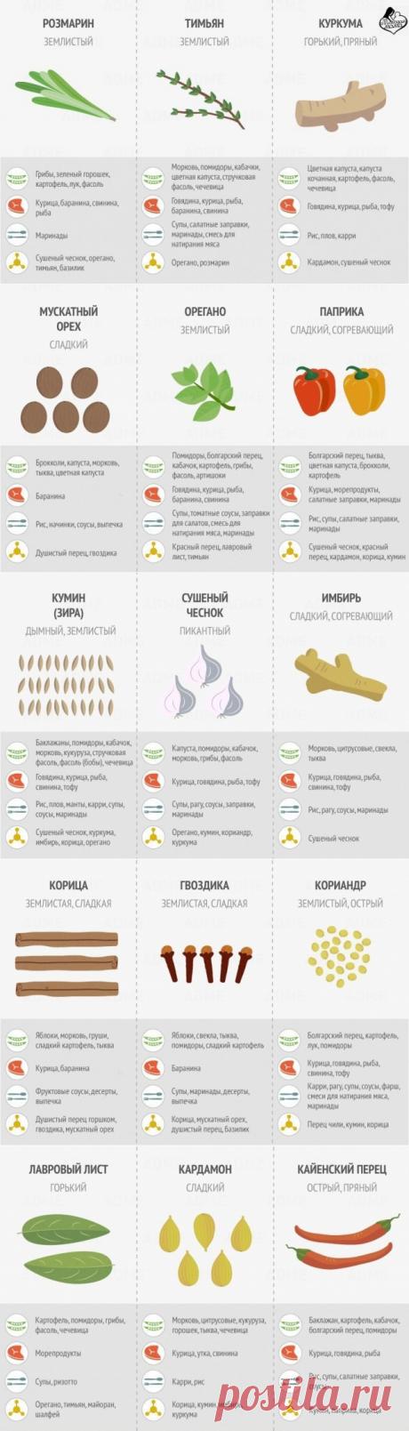 Классная шпаргалка по использованию специй — Полезные советы