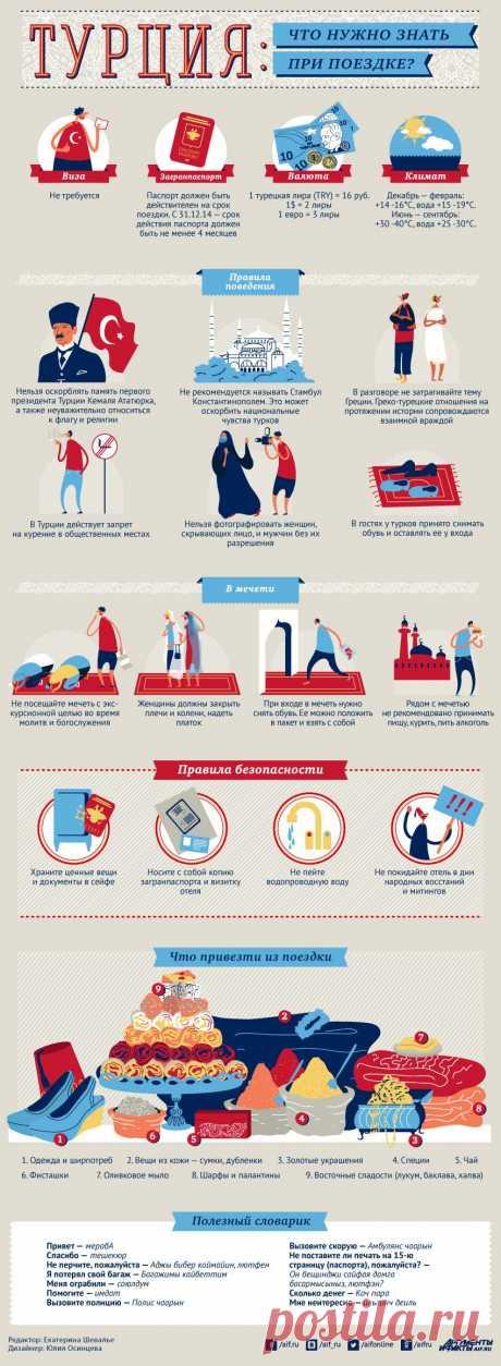 Что нужно знать при поездке в Турцию  Инфографика   Инфографика   Аргументы  и Факты 09cb4406a5e