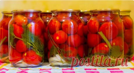 «Фирменный» рецепт помидор на зиму от моего мужа. Вкуснятина! - Вкусные рецепты - медиаплатформа МирТесен