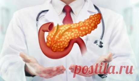 Советы по уходу за поджелудочной железой и профилактике панкреатита