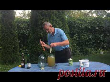 Система здоровья. Видео 4. Изготовление уксуса из крыжовника и применение уксусов.