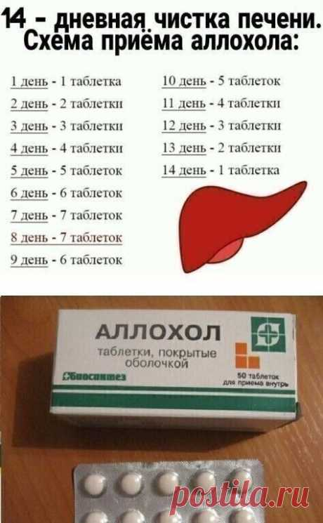 WE CLEAN THE LIVER AND ALL ORGANISM IN GENERAL.